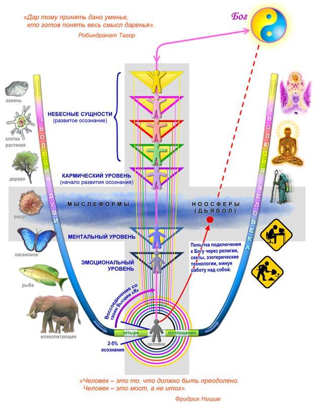 эволюция души и сознания